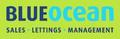 Blue Ocean Property Consultants