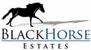 Blackhorse Estates - Leytonstone